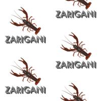 ZARIGANI_2C