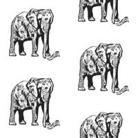 ELEPHANT_1K