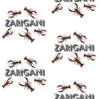ZARIGANI_1C