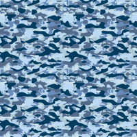 CAMOUFLAGE_1