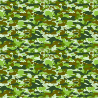 CAMOUFLAGE_2