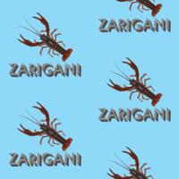 ZARIGANI_2C_B5