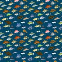 FISH_2_B4